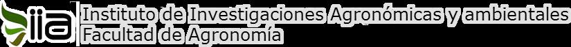IIA – FAUSAC